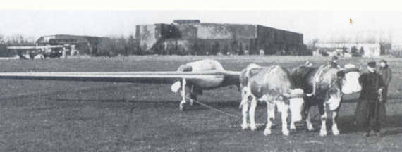 Horten flying wing under tow by oxen